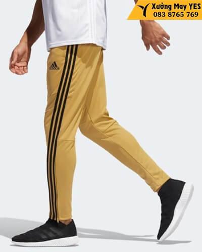 quần dài adidas nam vàng